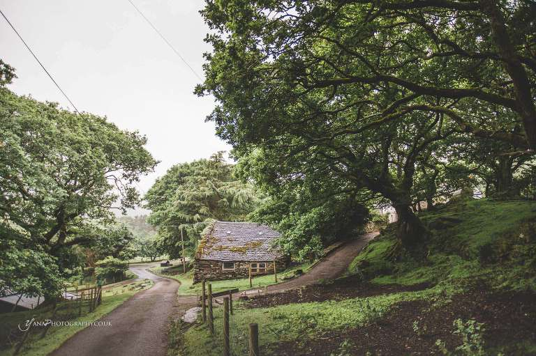 North Wales forest wedding