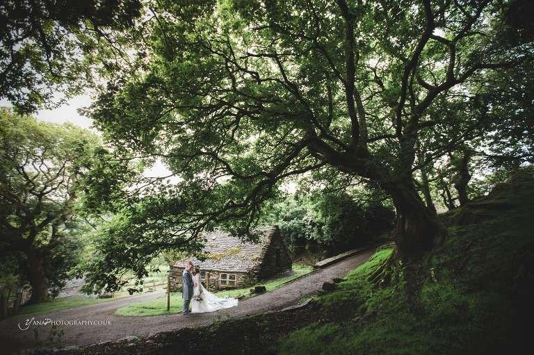 North Wales wedding photographer forest wedding